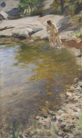 The Morning Toilet by Anders Zorn