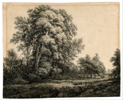Forest Landscape 2 by Edward Lear