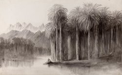 Wady Feiran, Peninsula of Mt. Sinai by Edward Lear