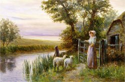 Awaiting The Return of The Sheep in The Sunset by Ernest Walbourn