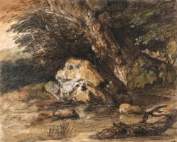 A Woodland Pool with Rocks And Plants by Gainsborough, Thomas