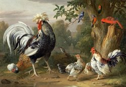 Poultry And Other Birds in The Garden of a Mansion by Jakob Bogdany