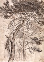 Study of Trees by James Ward
