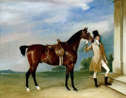 Miss Villebois Bay Hunter Held By A Groom by John E Ferneley