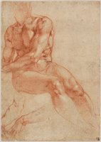 Seated Young Male Nude And Two Arm Studies (recto) by Michelangelo Buonarroti