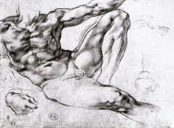 Study for The Creation of Adam by Michelangelo Buonarroti