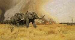Elephants Moving Before a Veldt Fire by Wilhelm Kuhnert