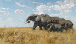 Elephants on The Move by Wilhelm Kuhnert