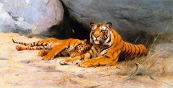 Tigers Resting by Wilhelm Kuhnert