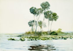 St. Johns River, Florida by Winslow Homer