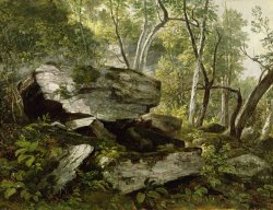 Study from Nature - Rocks and Trees by Asher Brown Durand