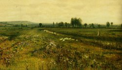 An Extensive Meadow Landscape with Geese by a Stream by John Atkinson Grimshaw