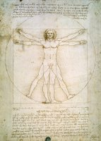 The Proportions of the Human Figure by Leonardo da Vinci