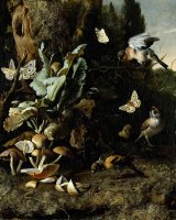 Animals And Plants by Philips Koninck