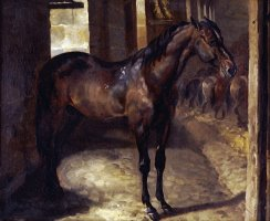 Anglo Arabian Stallion in The Imperial Stables at Versailles by Theodore Gericault