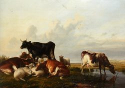Cattle And Sheep Probably in Canterbury Meadows by Thomas Sidney Cooper