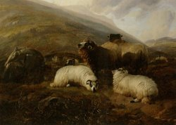 Sheep in The Highlands by Thomas Sidney Cooper